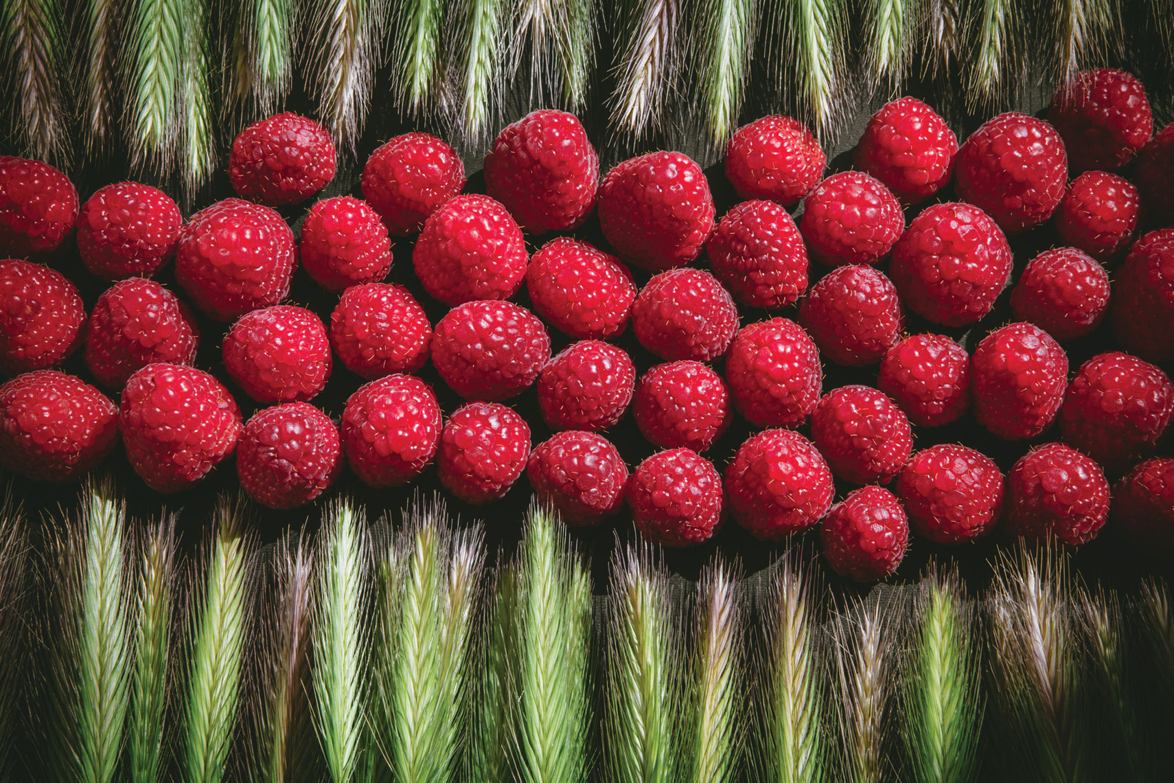 deepi-ahluwalia-tabletop-raspberries